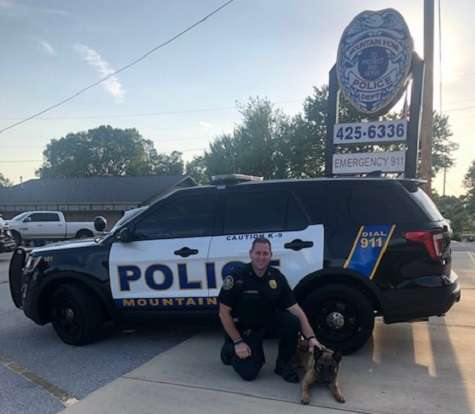 Mountain Home Police Department's K-9 Harmon to get donation of body armor